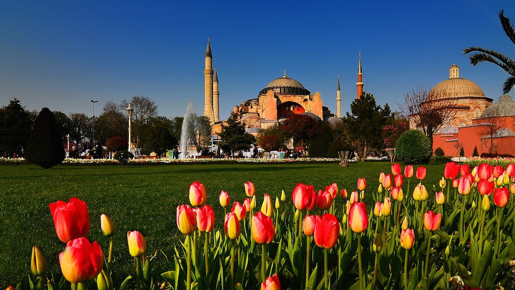 cityscapes_tulips_Turkey_Hagia_Sophia_Istanbul_cities_mosques_1920x1080